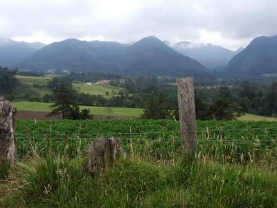 Landschaft im Iguaque Nationalpark (leider bei trübem Wetter)